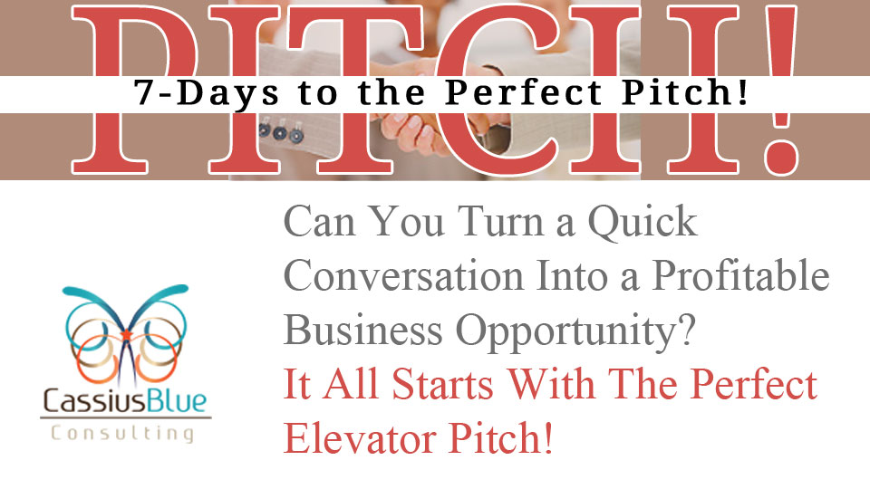 7 Steps to the Perfect (Elevator) Pitch